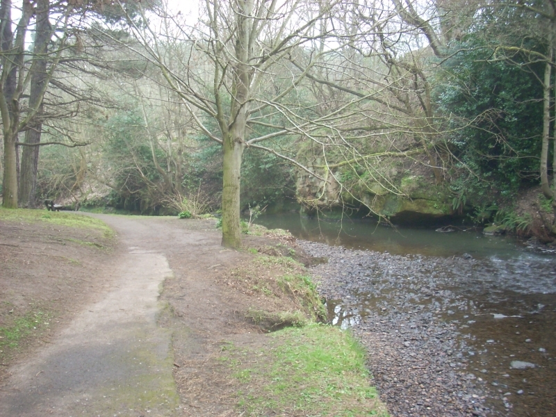 Kinness Burn near the botanic gardens