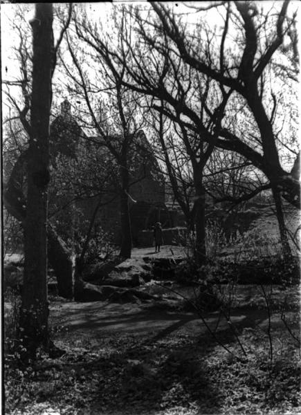 Law Mill (1900)