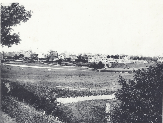 Cockshaugh Park before landscaping